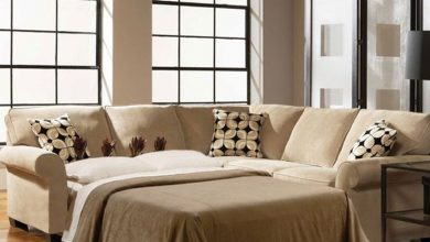 The Lazy Man S Guide To Loveseat Sleeper Sofas